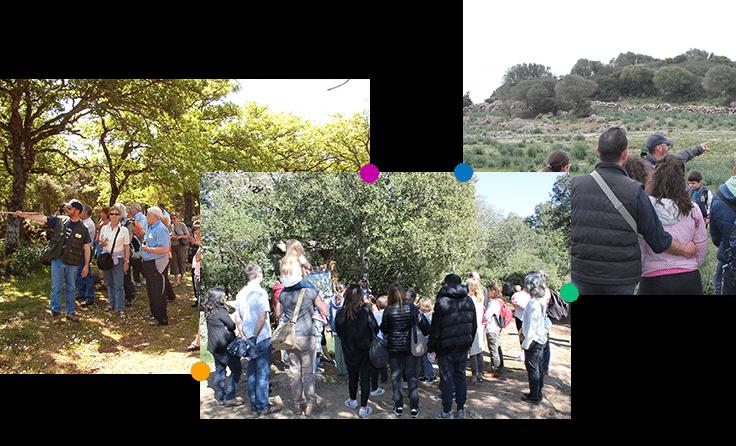 escursioni-nel-parco-della-giara-11